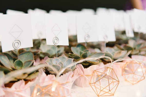 Awards, Launch Parties and the Celebrant Directory - Guild of Cornish Celebrants. Olivia Bossert Photography